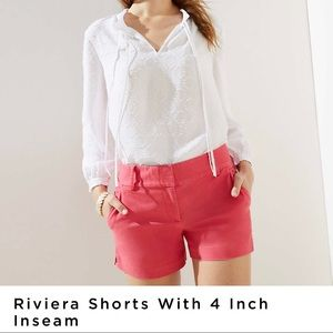 3 pairs of Loft Riviera Shorts size 6